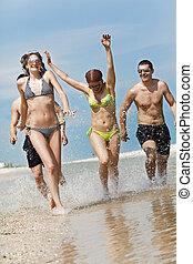 divertimento, spiaggia, amici, detenere