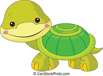 divertimento, zoo., tartaruga