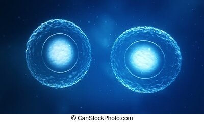 Dividing Cells  - Cells dividing and multiplying.