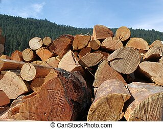 dividir, troncos