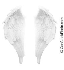 Simple detailed illustration of white angel wings with light between, ideal for use as background element