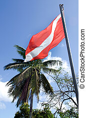 Diving Flag - Diving flag against palm tree on a pacific...