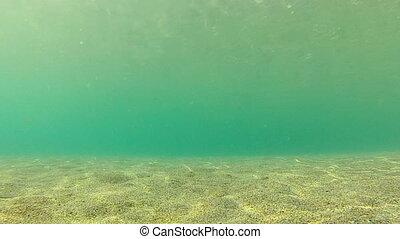Diving. Underwater footage. Shot in Montenegro, Adriatic sea