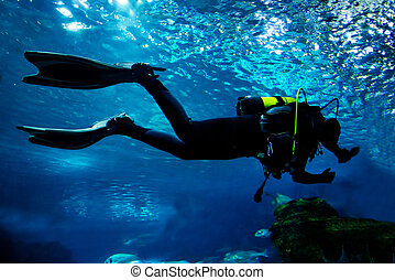 Diving in the ocean underwater - Diving in the ocean. Diver...