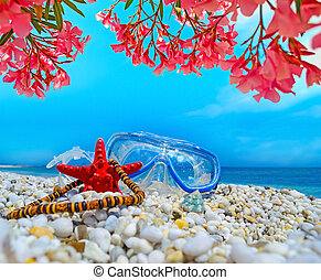 diving mask and pink flowers by th sea