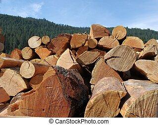 divisão, log