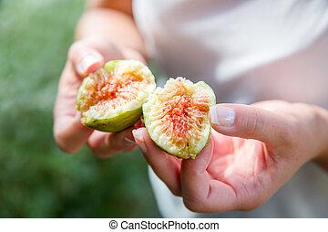 divisé, frais, organique, figues, depuis, les, arbre