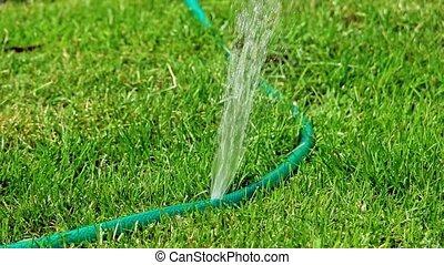 DIY watering sprinkler working in slow motion on the lawn