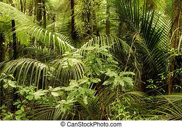 djungel