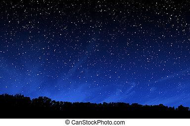 djup, natt himmel, med, många, stjärnor, och, skog