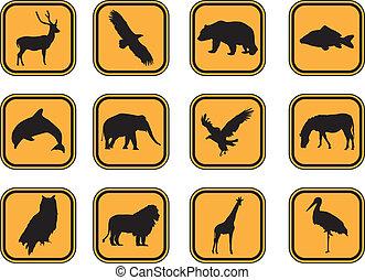 djur, icons.