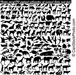 djur, stylized, vektor, sätta, fåglar, 170, silhouettes, fish.