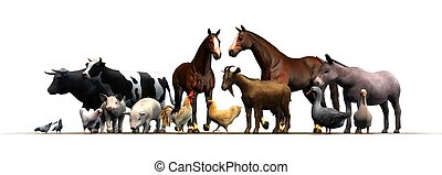 djuren, lantgård