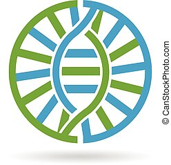 DNA  21 chromosomes circle. Vector grtaphic design