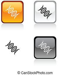 DNA button.