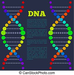 DNA Deoxyribonucleic Acid Chain Nucleotides Poster - DNA...