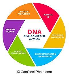 DNA develop nurture advance business IQ portfolio management...