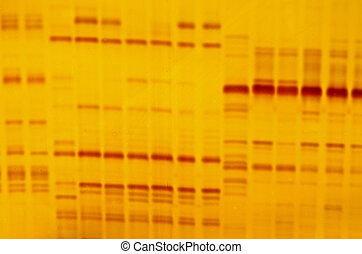 DNA fingerprint with indicator marks and yellow background