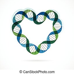 DNA, genetic icon - heart - DNA, genetic icon and element -...