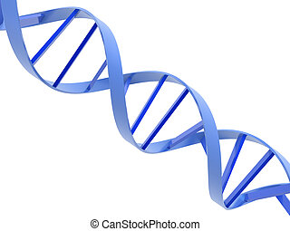 dna helixes - An isolated blue dna molecule on white ...