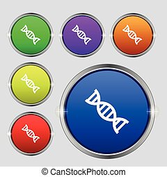 DNA icon sign. Round symbol on bright colourful buttons. Vector