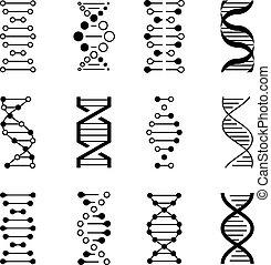 DNA icons. Genetic structure code, DNA molecule models...