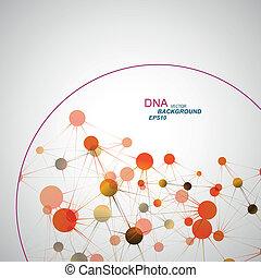 DNA, konexe, vektor,  eps10, síť