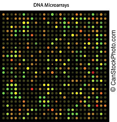 DNA microarrays chip used in cancer (and other diseases) ...