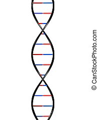 dna model - 3d rendered illustration from a part of a double...