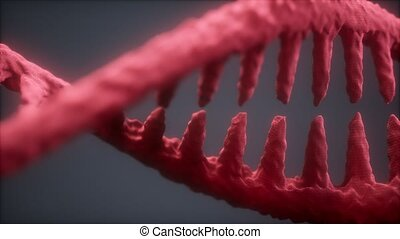 DNA molecule on the grey background
