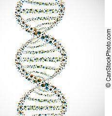 dna., molekyle