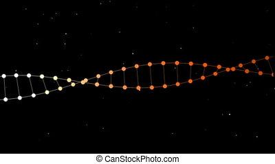 DNA Orange