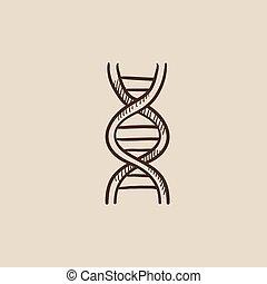 DNA sketch icon.