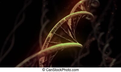 DNA spinning RNA double helix slow science electron ...