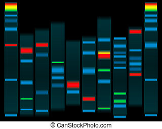 dna - Illustration of a human dna in black with highlighted...