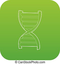 DNA strand icon green vector