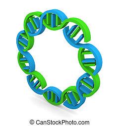 DNA Strand in circle