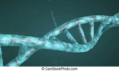 DNA Strand - DNA molecules are tightly packed around...