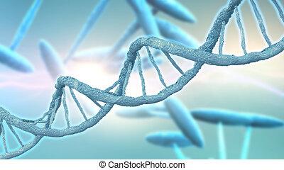 DNA strands background