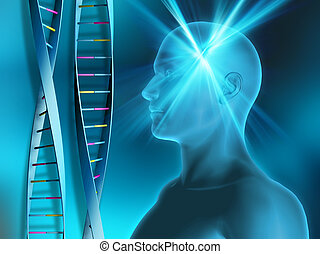 DNA strands with male figure