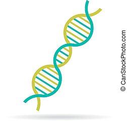 DNA string molecule icon