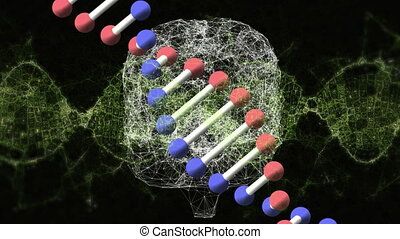 DNA structure spinning against digital brain
