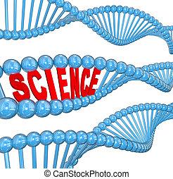 dna., videnskab, glose, biologi, lærdom, undervisning