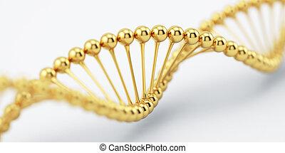 dns, goldenes, struktur, modell, mit, weicher fokus
