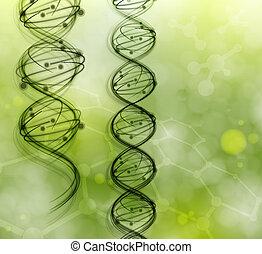 dns, moleküle