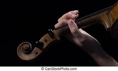 do góry, wiolinista, tło., violin., występuje, zamknięcie, skład, czarnoskóry