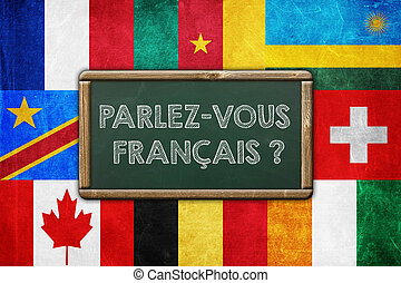 DO YOU SPEAK FRENCH - vintage background concept
