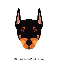 Doberman dog head. Portrait of dog.