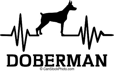 Doberman Illustrations And Clip Art 2 798 Doberman