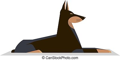 Dobermann lies on the ground on a white background, minimalistic image